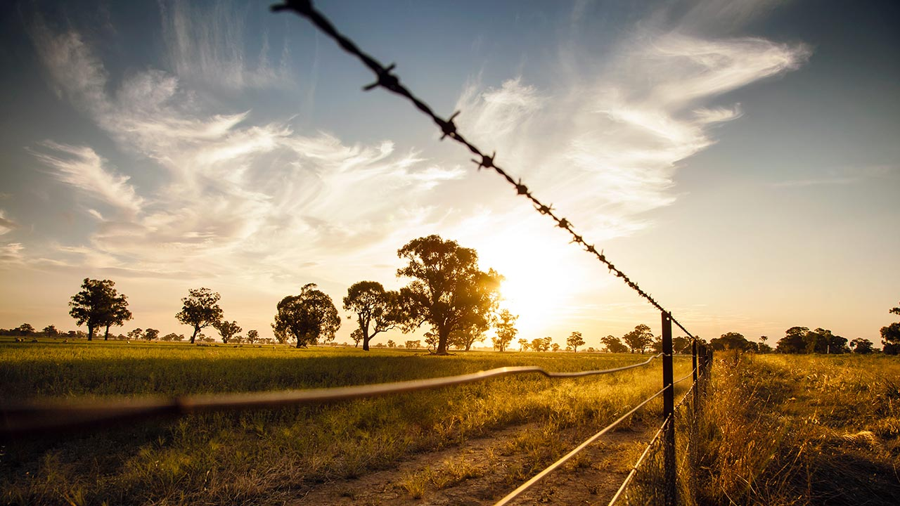 Cercas agropecuárias: construindo cercas definitivas ou temporárias.